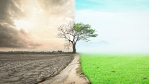 Украинские ассоциации подписали меморандум против использования темы экологии в политических целях