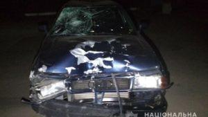 В Запорожской области пьяный водитель на Audi насмерть сбил двоих велосипедистов - ФОТО