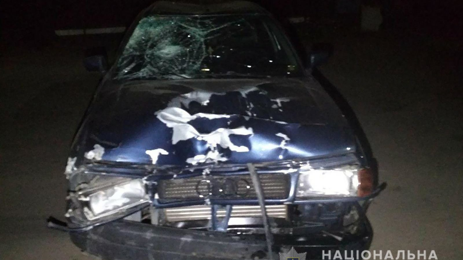 У Запорізькій області п'яний молодик на Audi насмерть збив двох велосипедистів - ФОТО
