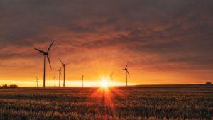 У Запорізькій області збираються побудувати найпотужнішу вітроелектростанцію в Україні
