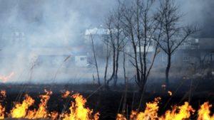 У Запоріжжі та області прогнозують високу пожежну небезпеку