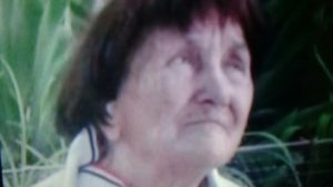 Літня жінка, яка щезла на початку серпня, загинула під колесами потяга