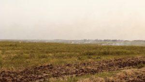 В Бердянске из-за умышленного поджога произошел масштабный пожар, - ФОТО