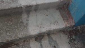 В Мелітополі на жінку ледь не вилили літр сірчаної кислоти, - ФОТО