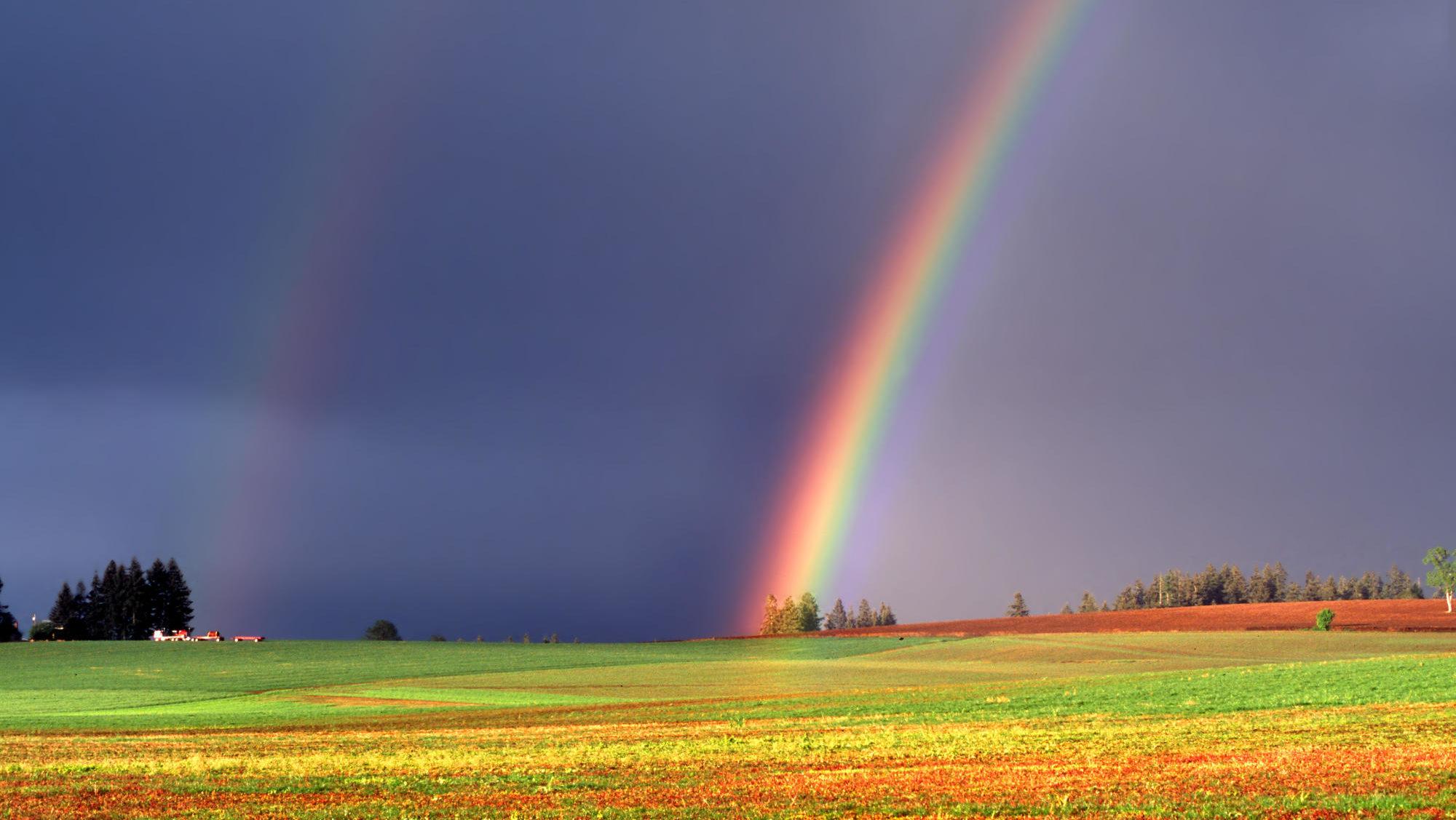 Гра світла: у Запоріжжі після дощу з'явилася веселка