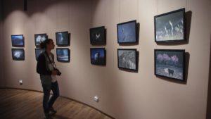 У Запоріжжі відкрили виставку сучасних фотопроектов авторів з різних країн - ФОТО