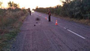 В Запорожской области водитель насмерть сбил женщину и скрылся с места ДТП: полиция разыскивает свидетелей, – ФОТО