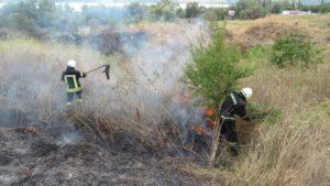 У Запорізькій області 164 рятувальника гасили пожежі в екосистемах: вогнем охоплено дев'ять гектарів