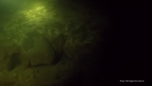 Дайвер из Запорожья продемонстрировал жизнь подводного мира Днепра – ФОТО, ВИДЕО