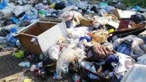 В Запорожской области сельсовет без конкурса поручил частной фирме вывозить мусор за бюджетные деньги