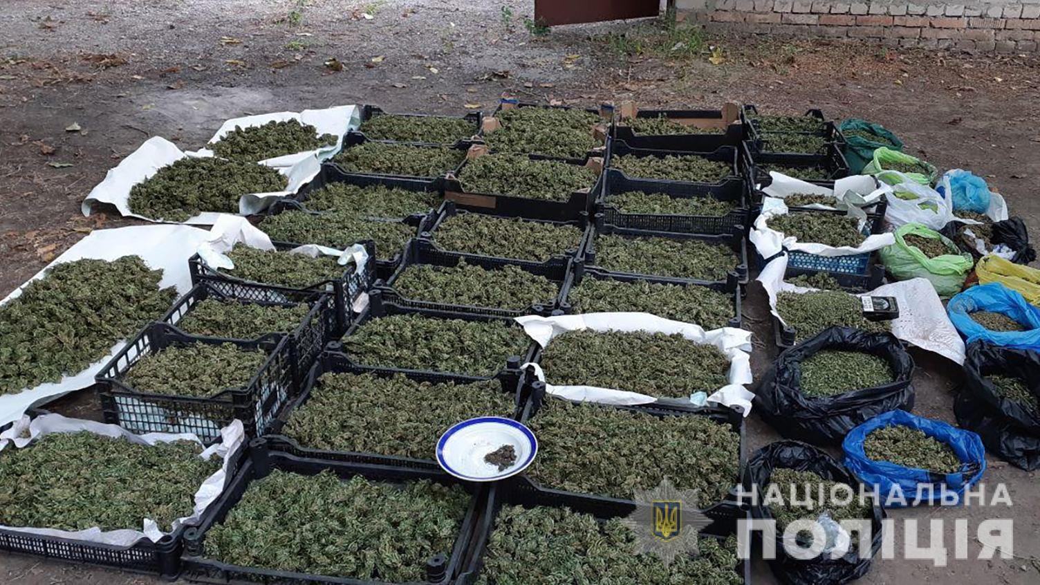 У Запоріжжі поліцейські накрили групу накоторговців з товаром на більш ніж 20 мільйонів гривень - ФОТО, ВІДЕО