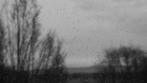 У Запорізькій області синоптики прогнозують на вихідні дощі, грози, сильний вітер і град