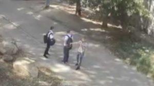 В Бердянске хулиганы забросали камнями приют для животных, - ВИДЕО