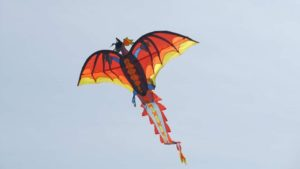 Бердянські школярі привезли перемогу з фестивалю повітряних зміїв