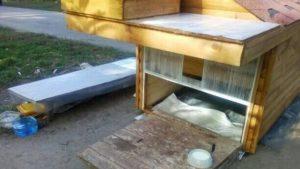 В Запоріжжі для котів побудували двоповерховий будиночок, - ФОТО