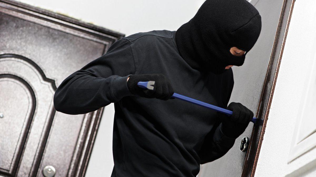 В Запорізькій області затримали квартирного злодія