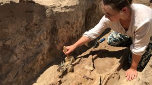 В Запорожской области раскопали древний акинак с золотыми украшениями, — ФОТО