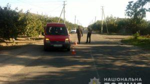 У Запорізькій області автомобіль збив школярку: дівчинка – у лікарні, – ФОТО