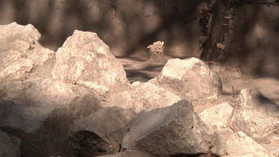 В Запорожье на Хортице археологи раскопали могилу выдающегося скифского воина, — ФОТО, ВИДЕО