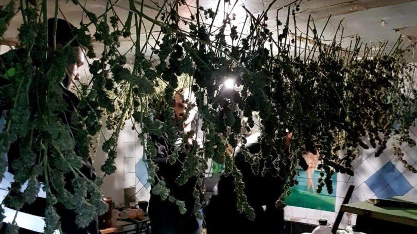 У мешканця Запорізької області вилучили майже 20 кілограмів наркотиків, — ФОТО