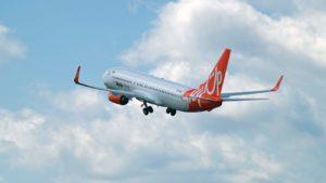 SkyUp запустит дополнительные рейсы из Киева во Львов и Запорожье, — ДАТА