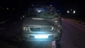 Под Запорожьем служебный автомобиль полиции насмерть сбил пешехода, – ФОТО