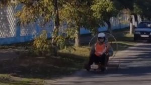 В Запорожской области на дороге был замечен