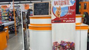 Супермаркет в Запоріжжі долучився до спасіння безхатніх тварин