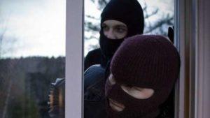Мешканців приватних будинків в Запорізькій області попереджають про злодіїв, які повісили собаку