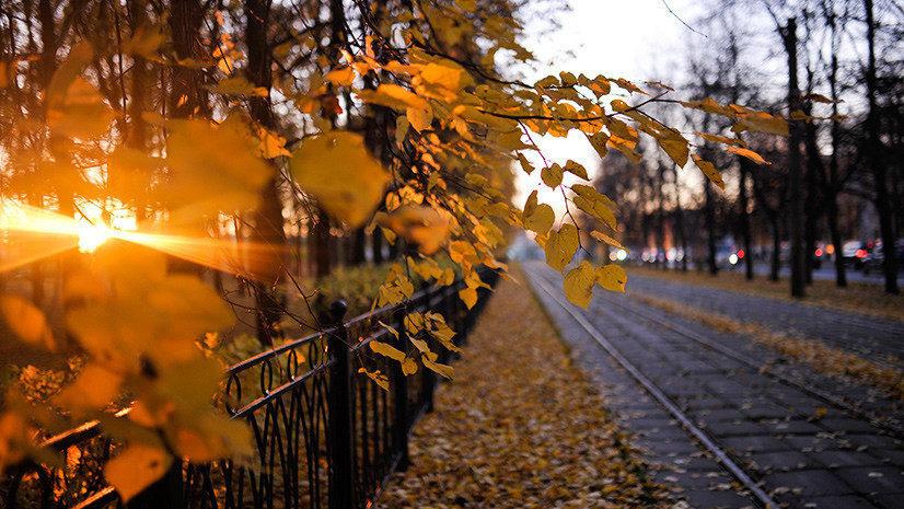 Как октябрь: какая погода ожидает жителей Запорожской области в эти выходные, — ПРОГНОЗ