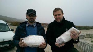 Стало известно, что сделают с бивнем мамонта, который нашли на запорожском побережье, – ВИДЕО