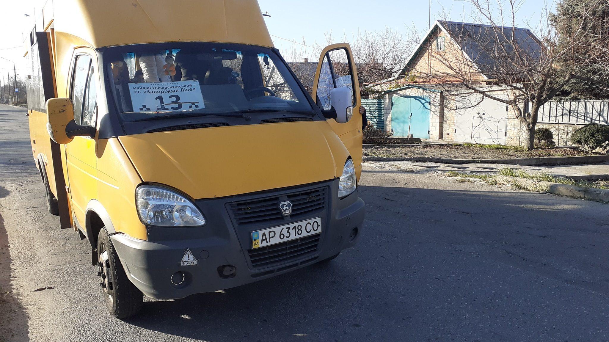 В Запорожье водитель маршрутки ударил пассажирку и отказался бесплатно везти ребенка-льготника, – ФОТО