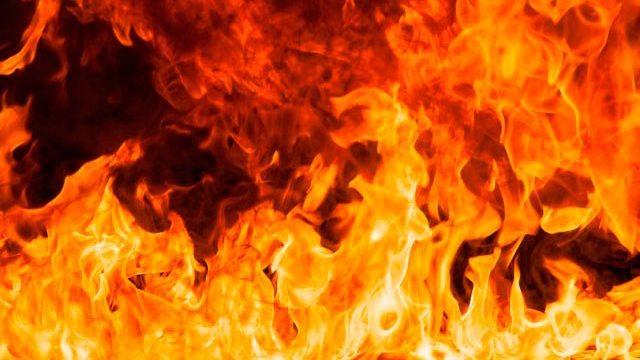 Под Запорожьем из-за тепловентилятора в пожаре погиб мужчина, – ФОТО