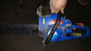 В Запорізькій області поліцейські спіймали дроворуба