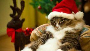 На українців чекають додаткові новорічні вихідні