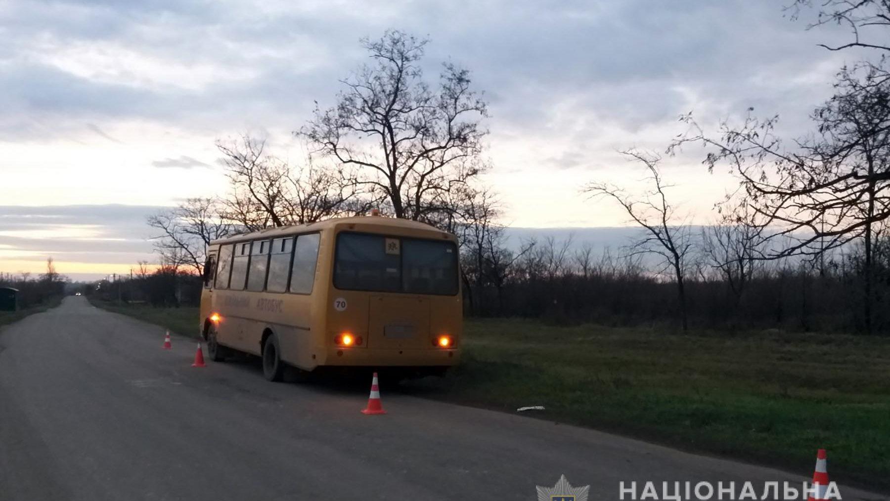 В Запорожской области в ДТП попали школьный автобус и автоцистерна, – ФОТО
