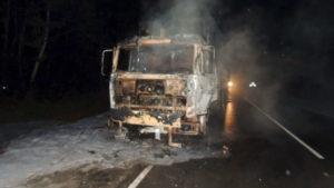 В Запорожской области на трассе сгорел зерновоз, — ВИДЕО