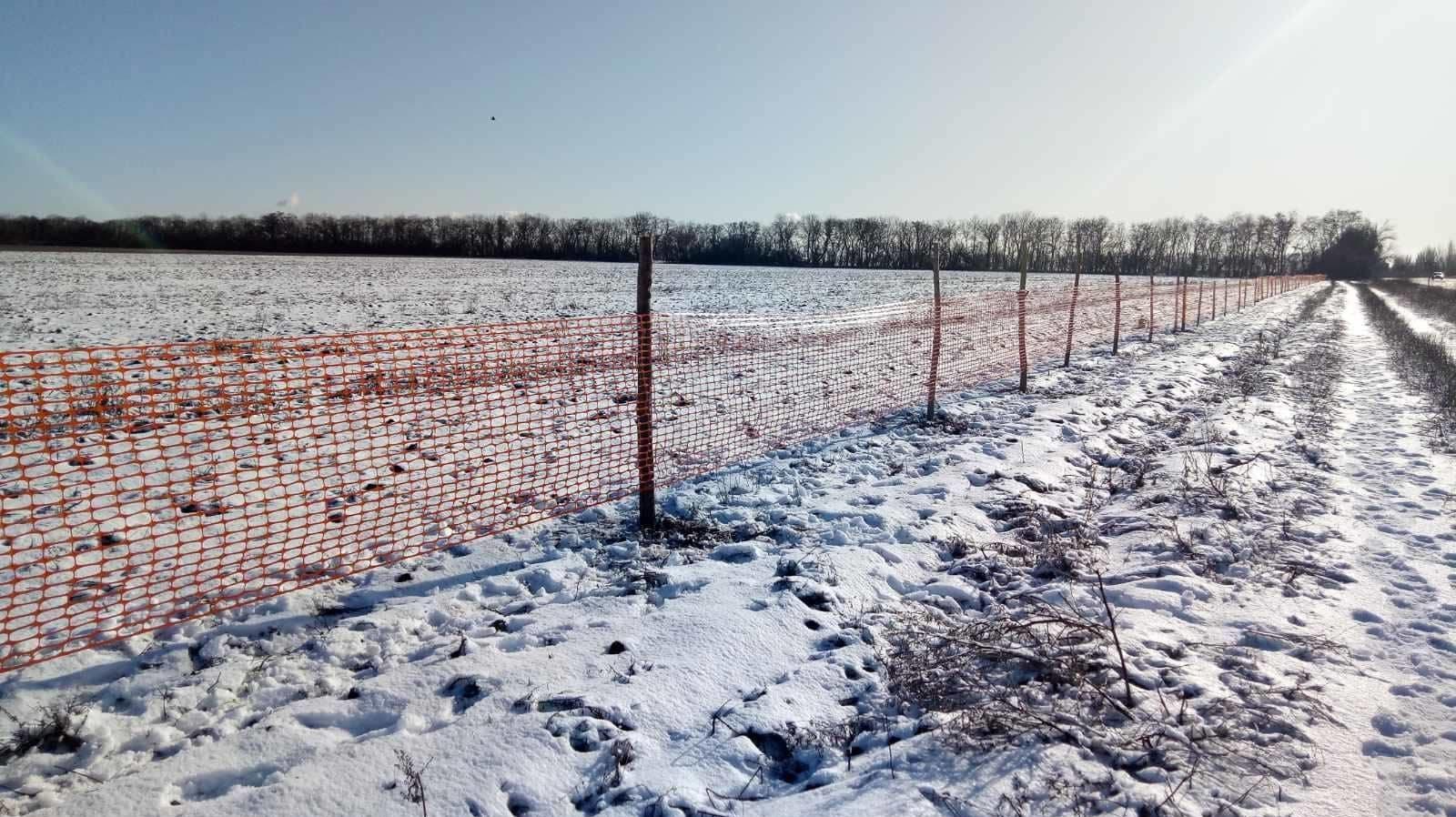 Замість лісосмуг: у Запорізькій області на трасах встановили снігозахисні сітки, — ФОТО