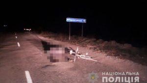 У Запорізькій області поліція розшукує винуватця смертельної ДТП