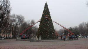 Главную елку Запорожья демонтировали