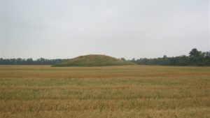 В Запорізькій області знайшли ще два кургани