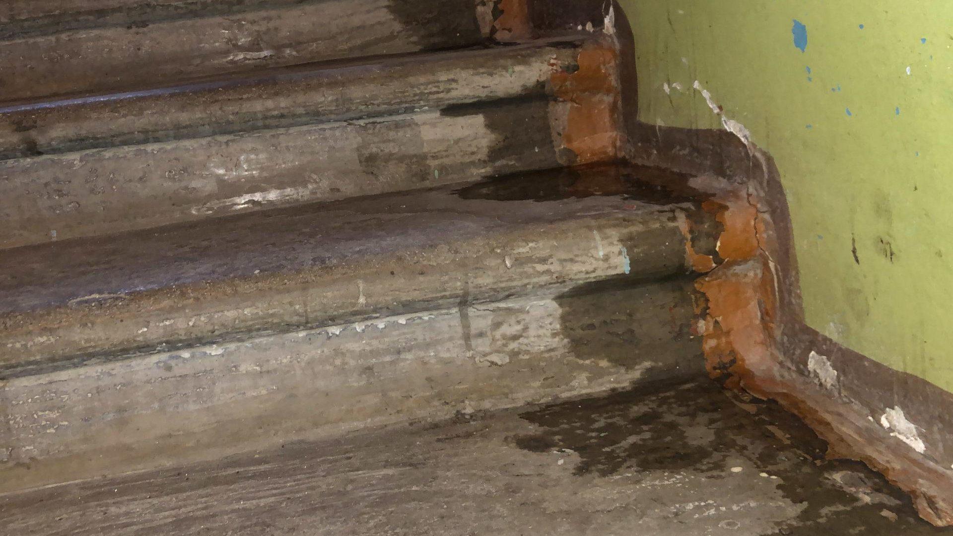 В Запорізькій області хулігани залили три багатоповерхівки кип'ятком