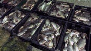На Каховском водохранилище полицейские поймали очередных браконьеров