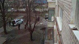 В Запорожье застрелили алабая, который напал на двух человек