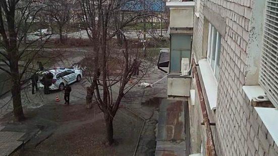 В Запоріжжі застрелили алабая, який напав на двох людей