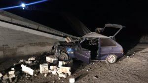 В пригороде Запорожья насмерть разбился водитель