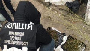 В Запорожской области полицейские нашли у женщины наркотиков на 40 тысяч гривен, — ФОТО