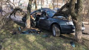 На Космосі водій Audi на смерть збив пішохода, —- ПОДРОБИЦІ, ВІДЕО