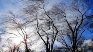 Завтра на території Запорізької області посилиться вітер
