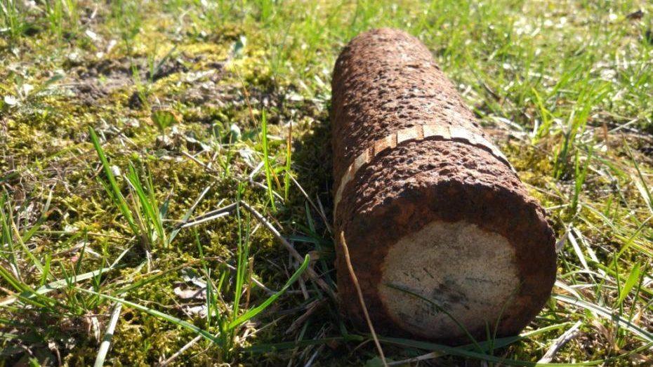 В Запорізькій області поблизу села знайшли 29 мін та артснарядів